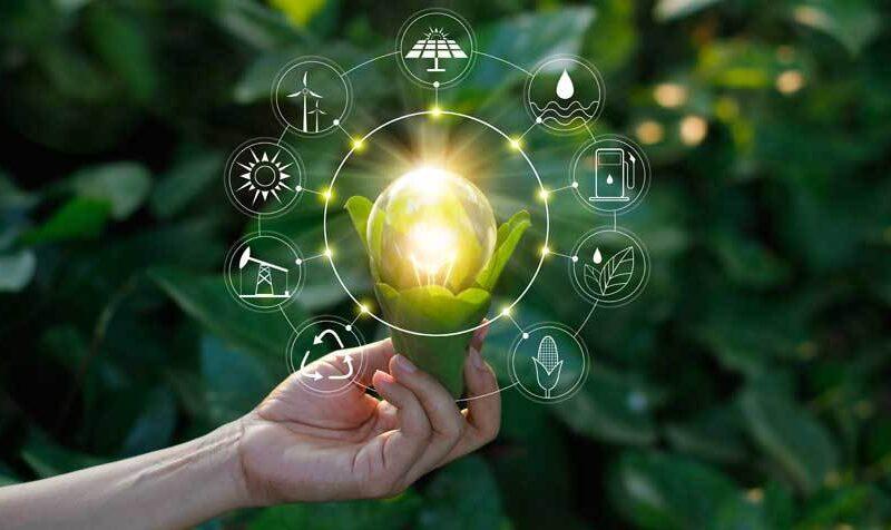 Come scegliere il nuovo fornitore di energia